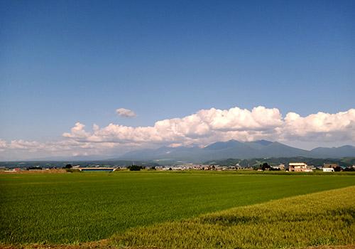十勝岳と田園風景